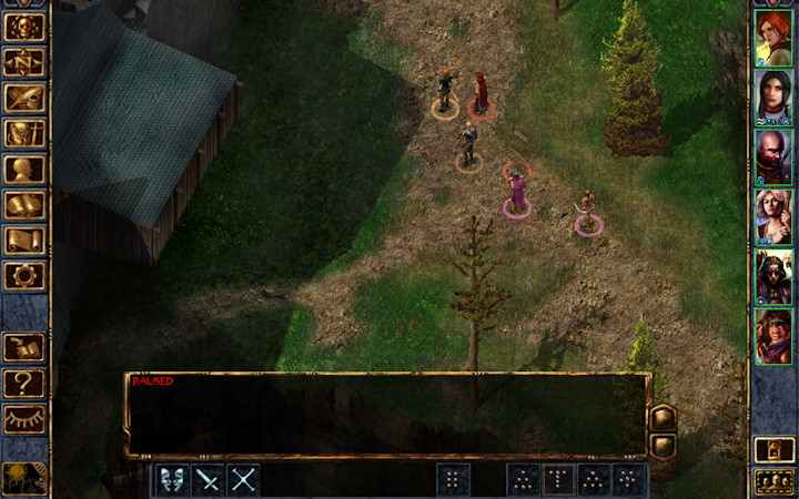 Baldur's Gate Enhanced Edition Brian Watkins