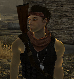 Niner companion mod screenshot - New Vegas | Brian Watkins