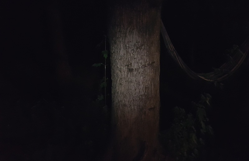 Lumintop IYP365 Tree Low Mode